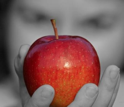 werder äpfel pflücken