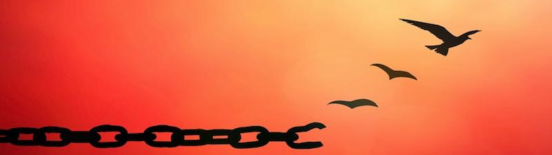 Vergebung befreit